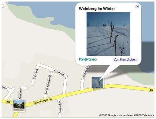 Weinberg in Selent?